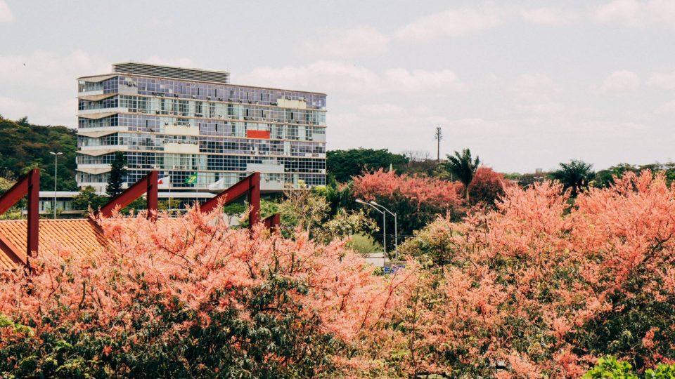 Reitoria da UFMG. Foto: Lucas Braga