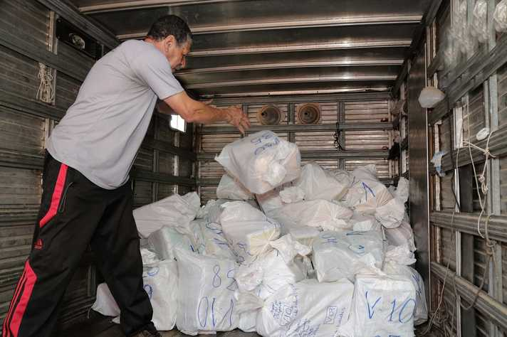 Descarte responsável: em nova operação, UFMG eliminou o equivalente a mais de três milhões de folhas de papel