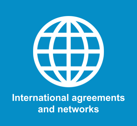 International agreements and networks