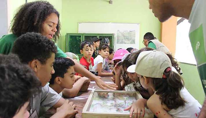 Atividade Extensionista De Educação Ambiental Na Estação Ecológica Da UFMG. (Comunicação   Proex UFMG)