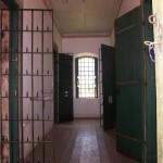 cadeia (5)