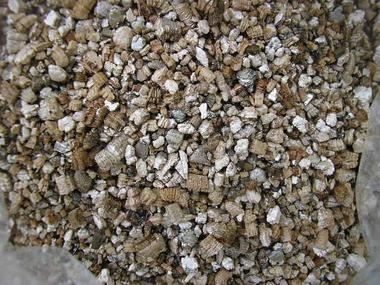 vermiculita.JPG