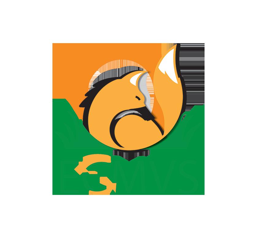 ECMVS