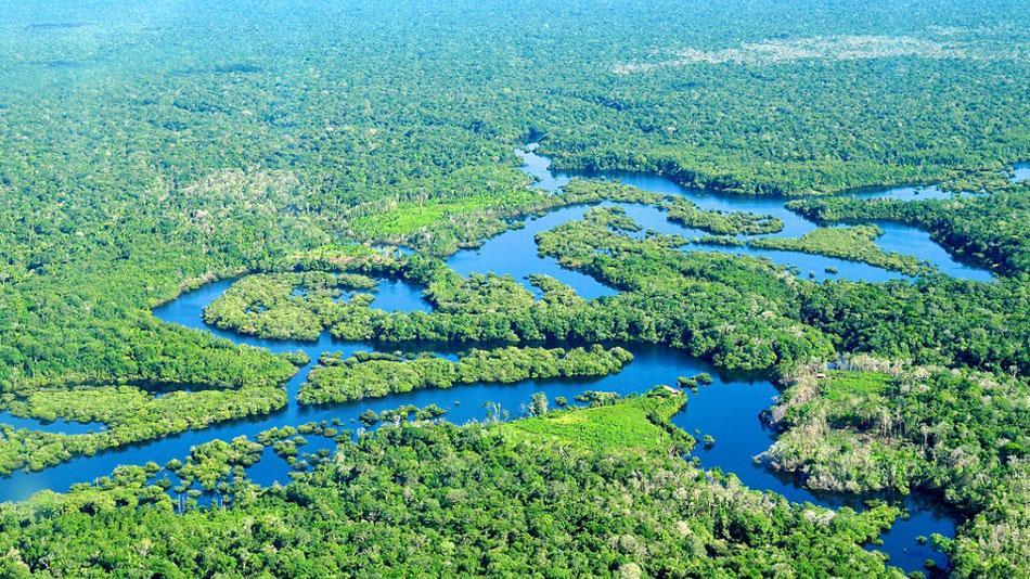 Pesquisadores escoceses ministram workshop e buscam cooperação com especialistas brasileiros na área de gestão ambiental