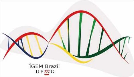 Equipe iGEM UFMG representa o Brasil em competição nos EUA